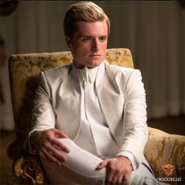 peeta_mellark-the_hunger_games